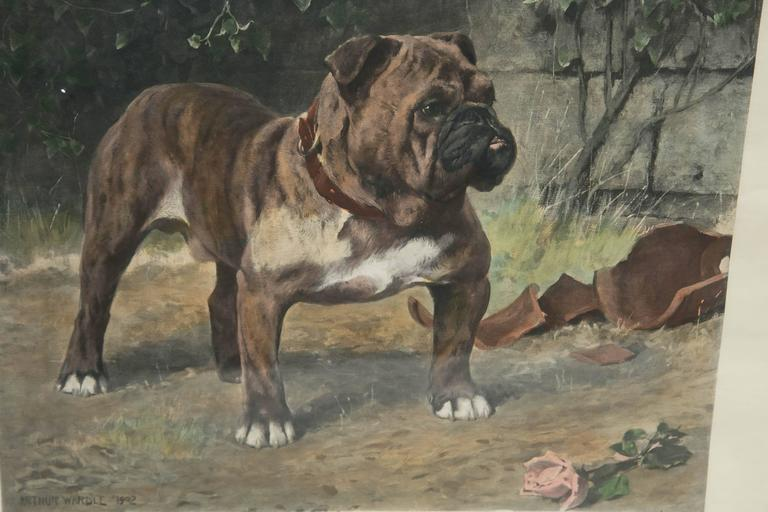 Other Arthur Wardle