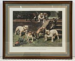 """Bull Bitches of the 20th Century"" Bulldog Portrait by Arthur Wardle"