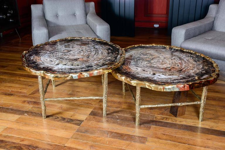 French Pair of Petrified Wood Low Tables For Sale
