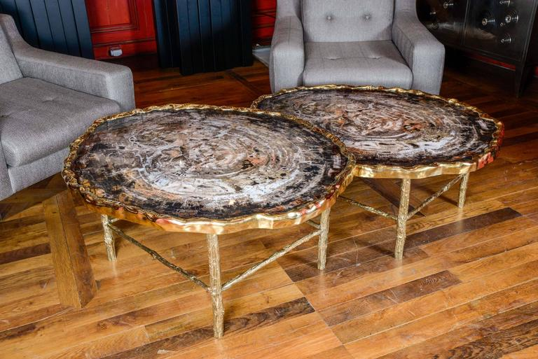 Brass Pair of Petrified Wood Low Tables For Sale