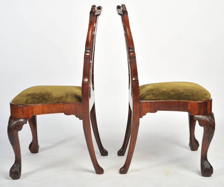 A very impressive set of six George I period red walnut dining chairs, being of generously proportions, classically carved back splats, drop in seats and raised on carved cabriole legs.