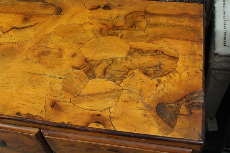 Italian Olivewood Chest 5