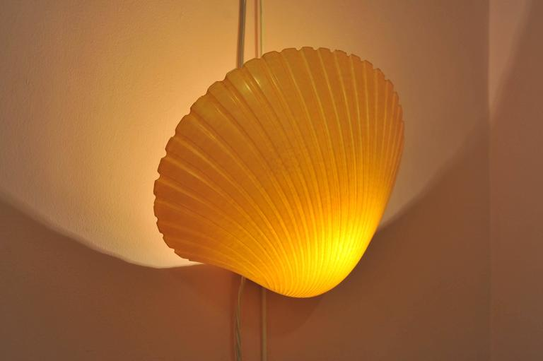 Pair of Italian 1950s Shell Wall Lights at 1stdibs