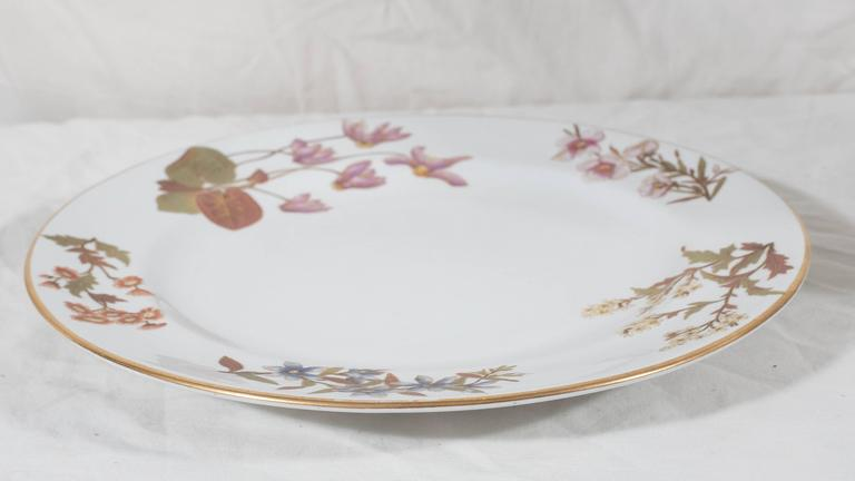 Late 19th Century Antique Royal Worcester Porcelain Dishes Made in England circa 1877 For Sale