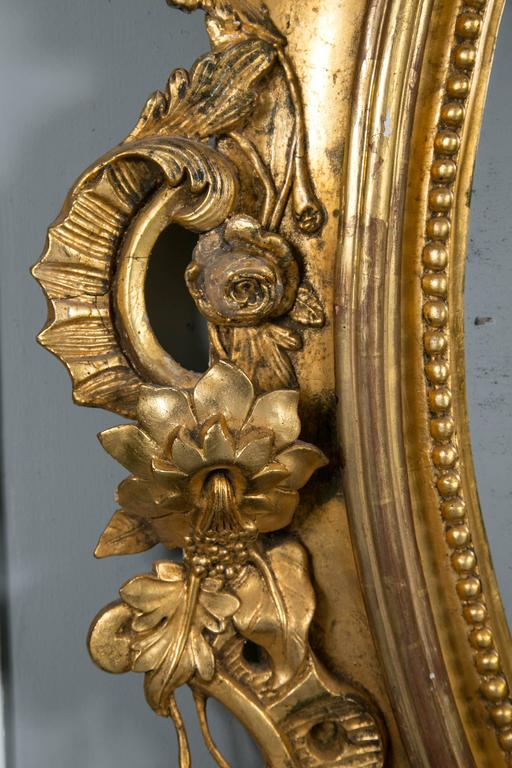 A palatial antique Louis XV style wood and gilt gesso mirror. Oval in form having scrolling foliate and acanthus border with pierced carved crest centered with a carved sea shell.