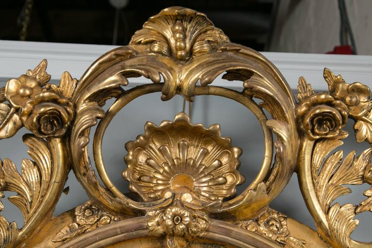 French Monumental Antique Louis XV Style Wood and Gilt Gesso Mirror For Sale