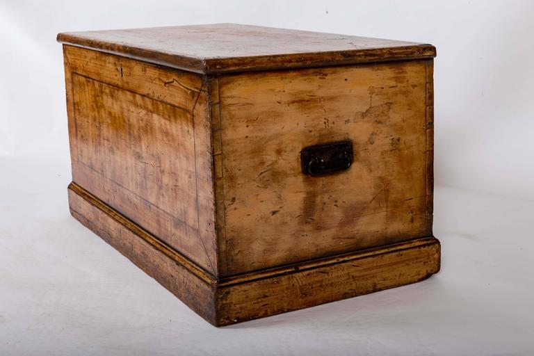 19th Century Painted Blanket Trunk, England, circa 1870 For Sale 2