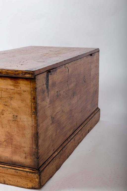 19th Century Painted Blanket Trunk, England, circa 1870 For Sale 3