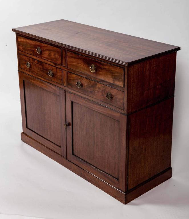 Early 19th Century Mahogany Storage Cabinet, England, circa 1820 2