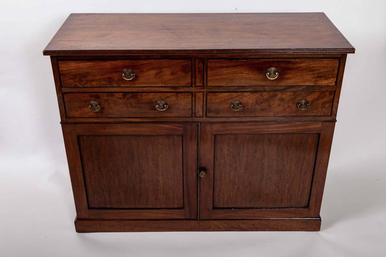 Early 19th Century Mahogany Storage Cabinet, England, circa 1820 3