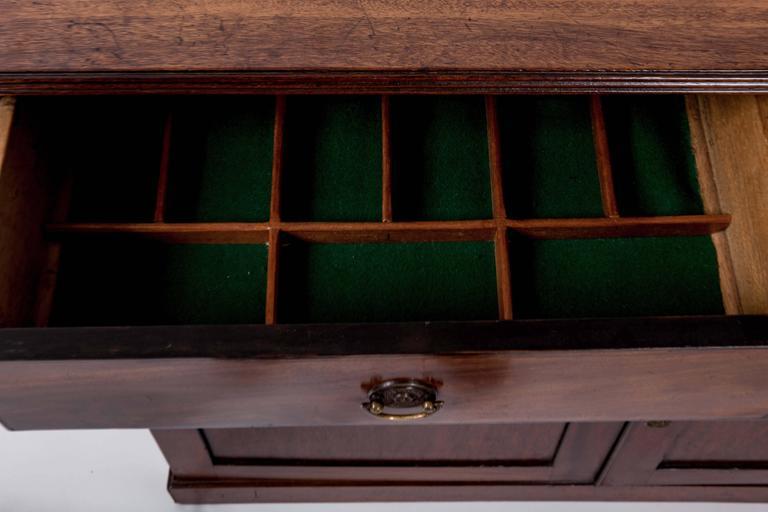Early 19th Century Mahogany Storage Cabinet, England, circa 1820 7