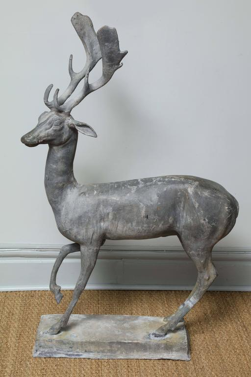 An enchanted stag captured in mid-stride. He has a whimsical expression on his turned face, alert ears and is standing in a watchful pose with a raised right front paw. This is a very rare 18th century English garden statue in heavy lead. It is