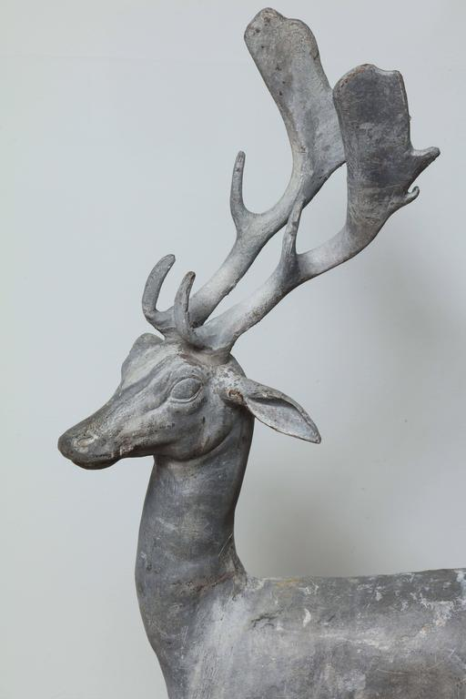 Classical Roman Enchanted Stag For Sale