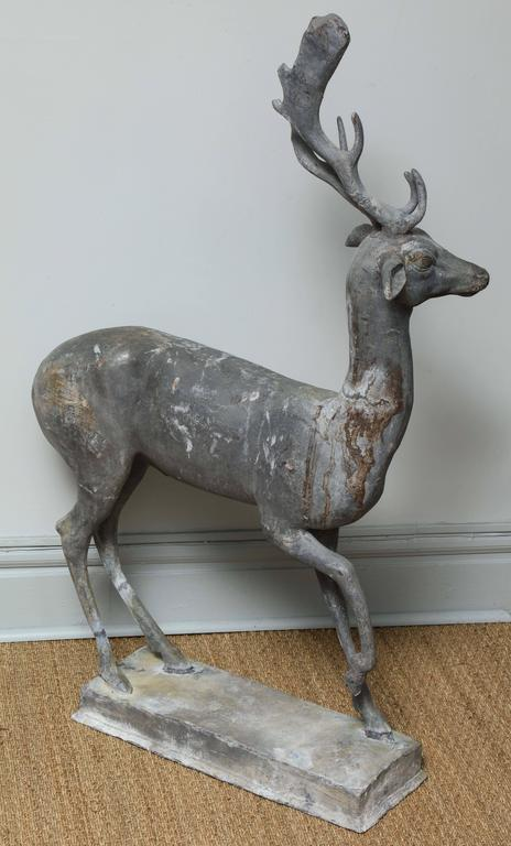 Enchanted Stag For Sale 1