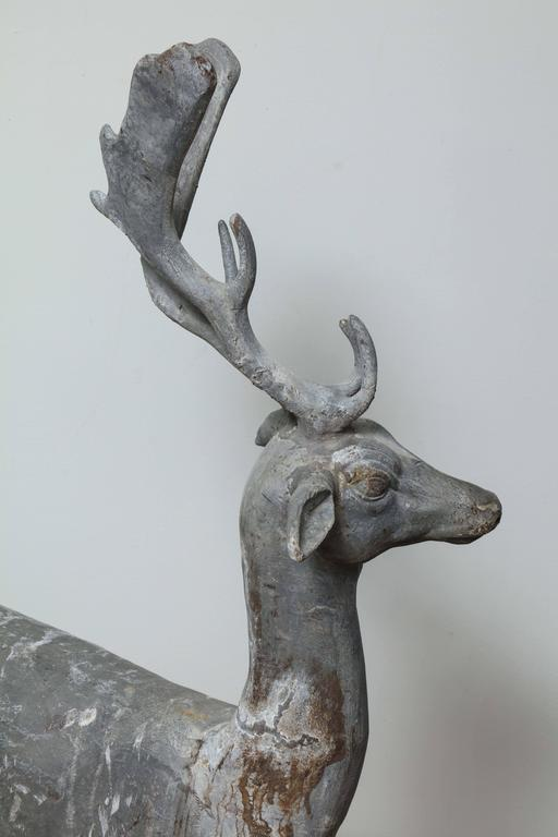 Enchanted Stag For Sale 2