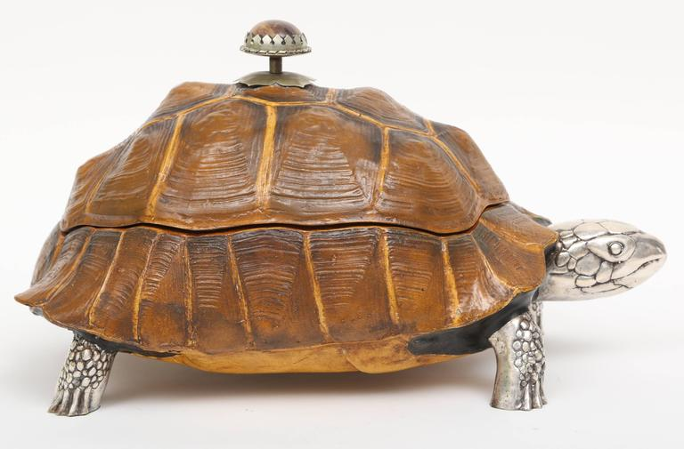 Large Tortoise Box by Anthony Redmile 2