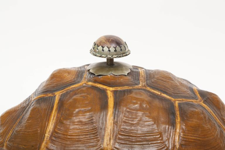 Large Tortoise Box by Anthony Redmile 6