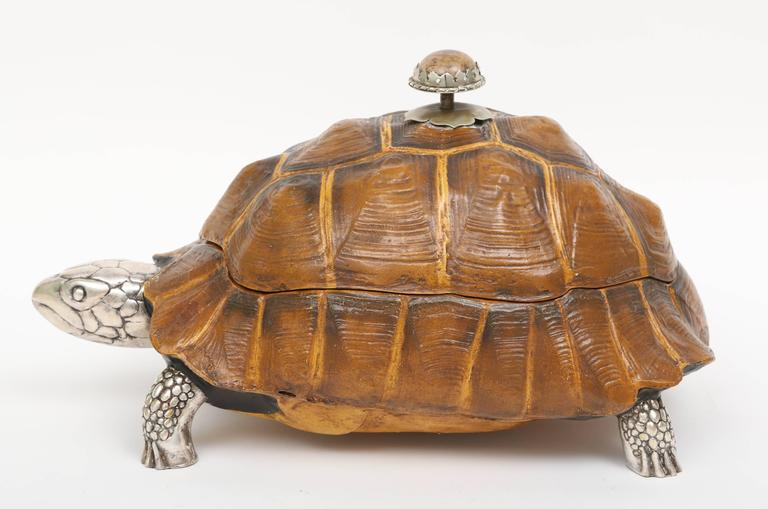 Large Tortoise Box by Anthony Redmile 7
