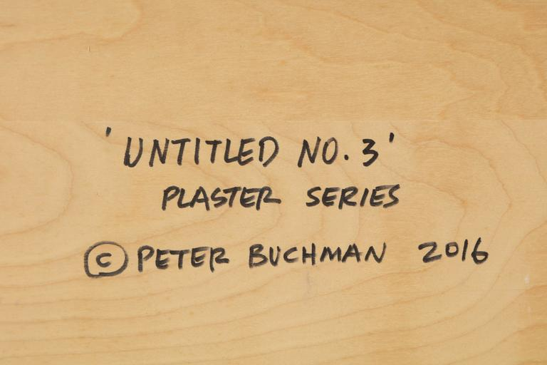 Peter Buchman Untitled No. 3, Plaster Series on Wood with Frame, 2016 For Sale 3