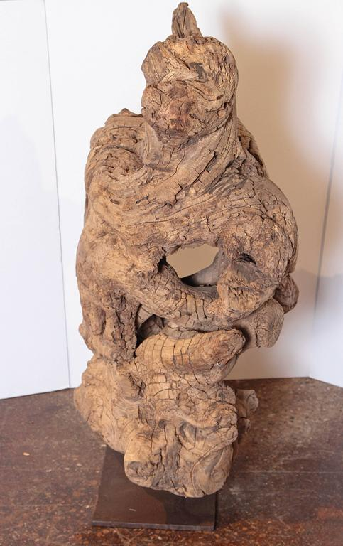 Organic Modern Organic Natural Driftwood Sculpture For Sale