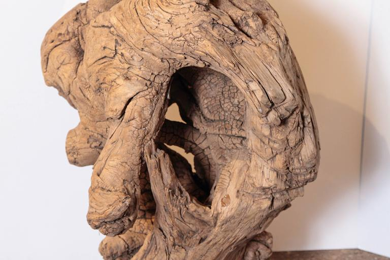 Organic Natural Driftwood Sculpture For Sale 3