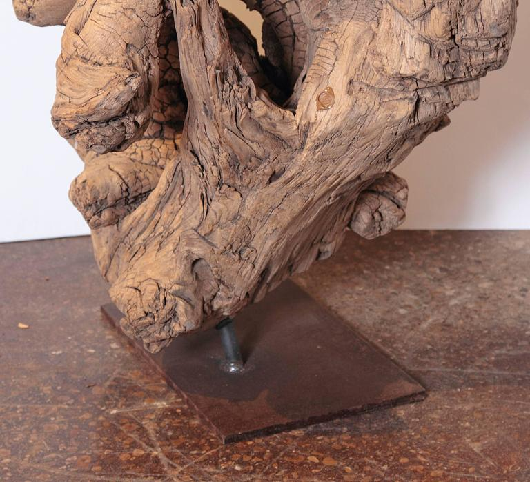 Organic Natural Driftwood Sculpture For Sale 4