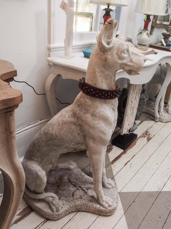 Lifesize concrete carved Great Danes with collars. Intricate detailing. Great weathered patina.
