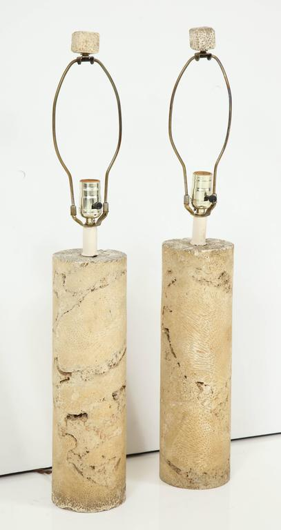 Pair of Fossil Coral Lamps 2
