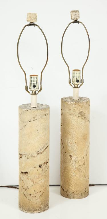 Pair of Fossil Coral Lamps 3