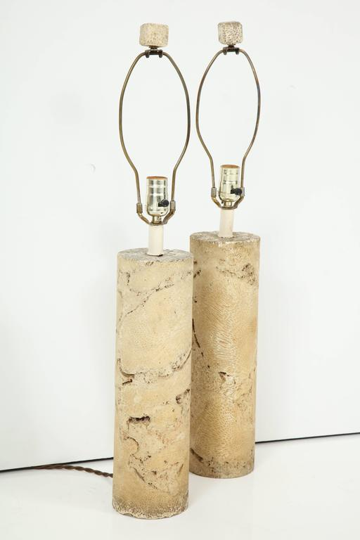 Pair of Fossil Coral Lamps 4