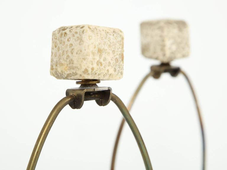 Pair of Fossil Coral Lamps 5