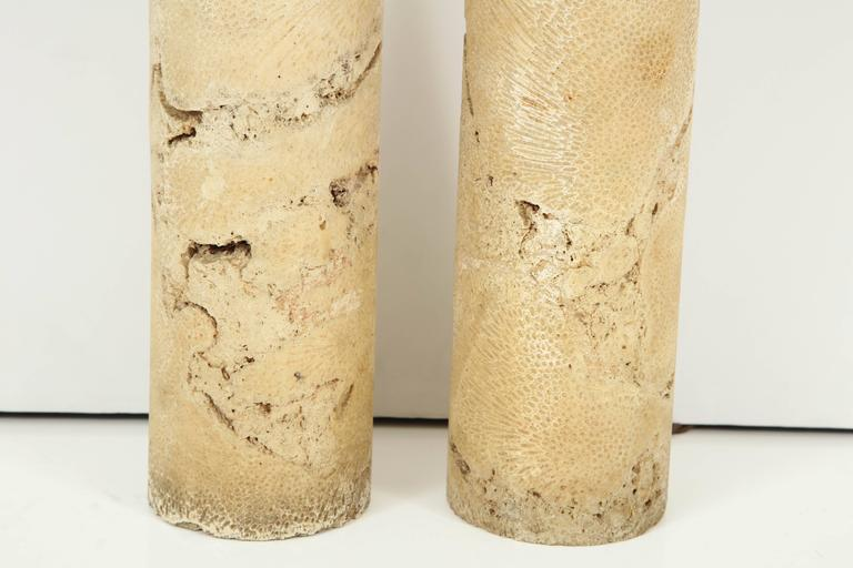 Pair of Fossil Coral Lamps 6