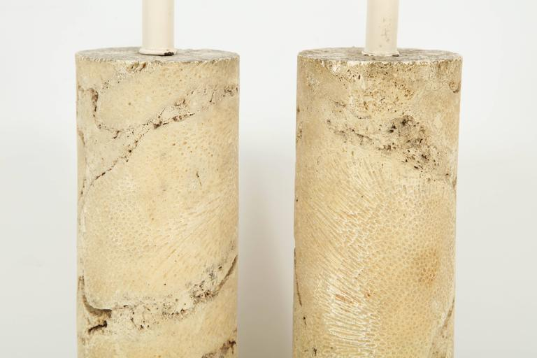 Pair of Fossil Coral Lamps 7