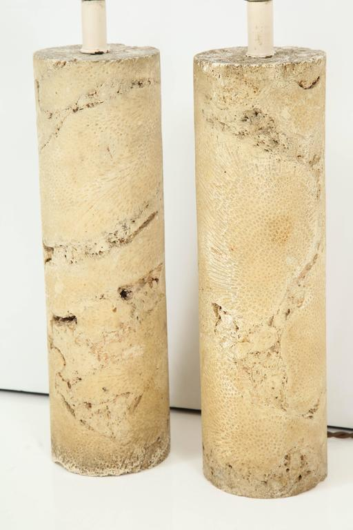 Pair of Fossil Coral Lamps 8