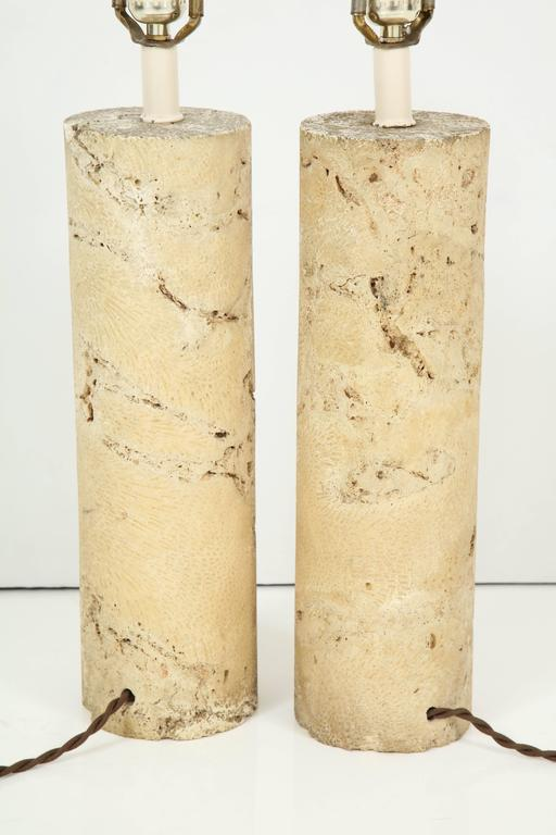 Pair of Fossil Coral Lamps 9