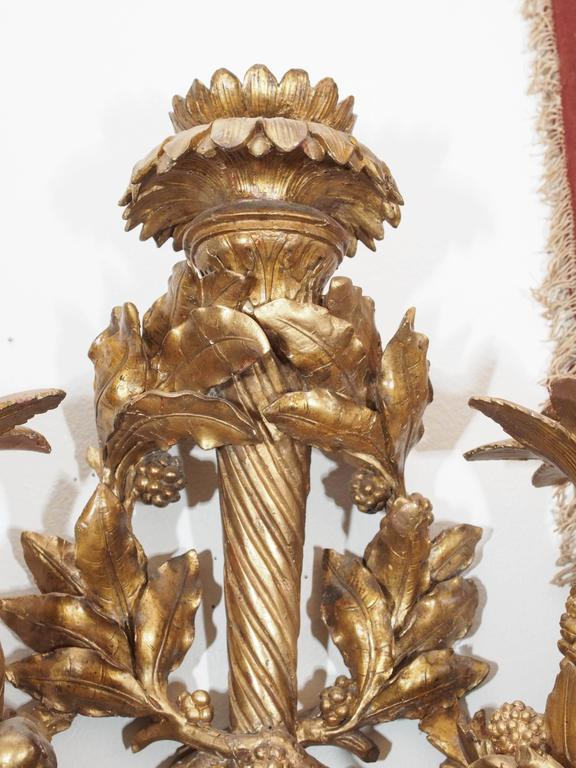 Exceptional carved giltwood wall sconces of great size and importance. These are truly a carves master work. All carved from hardwood with fruit flowers and foliate decoration.