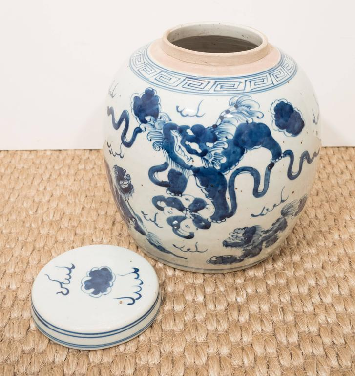 Pair of Blue and White Chinese Export Ginger Jars 5