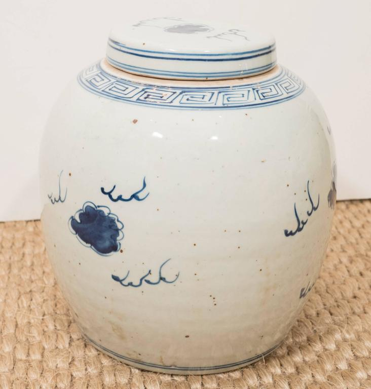 Pair of Blue and White Chinese Export Ginger Jars 8