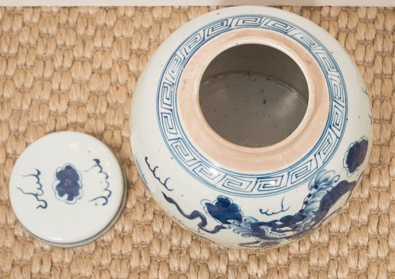 Pair of Blue and White Chinese Export Ginger Jars 9