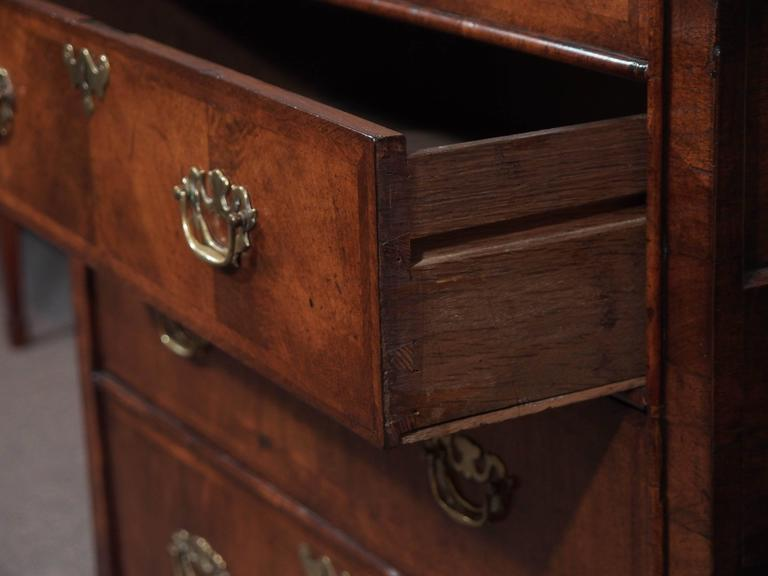 Antique English George I Walnut Chest of Drawers 6