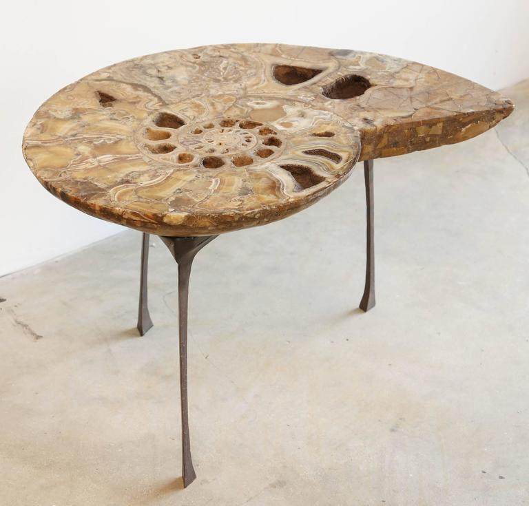 Pleasing Coffee Or Sofa Table A Fossil Of Ammonite Standing On A Spiritservingveterans Wood Chair Design Ideas Spiritservingveteransorg