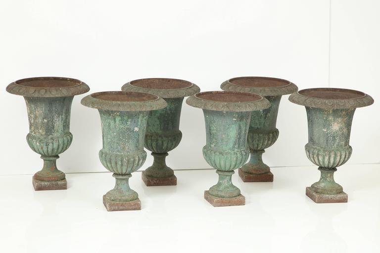 Six cast iron Campana style garden urns with the remains of a lovely shade of original green paint.
