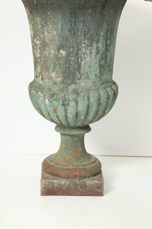 Rare Set of Six Cast Iron Garden Urns 4