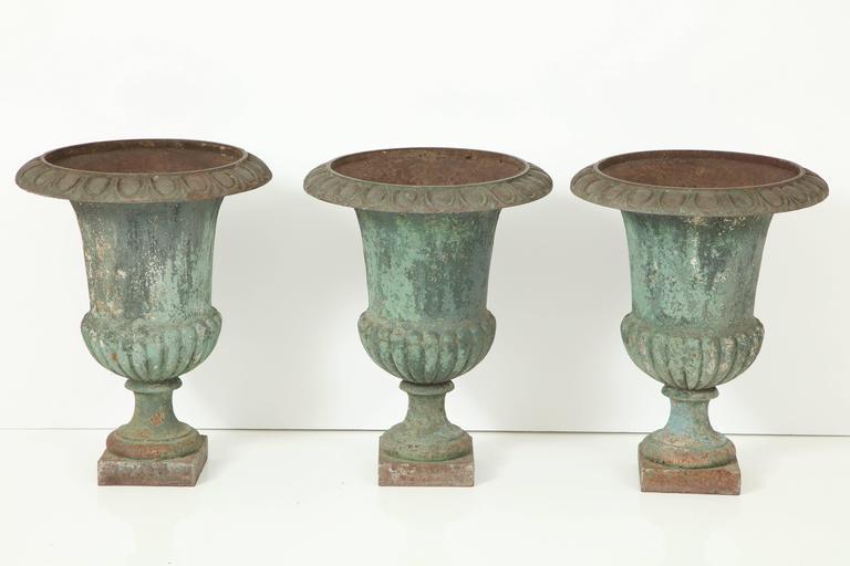 Rare Set of Six Cast Iron Garden Urns 7