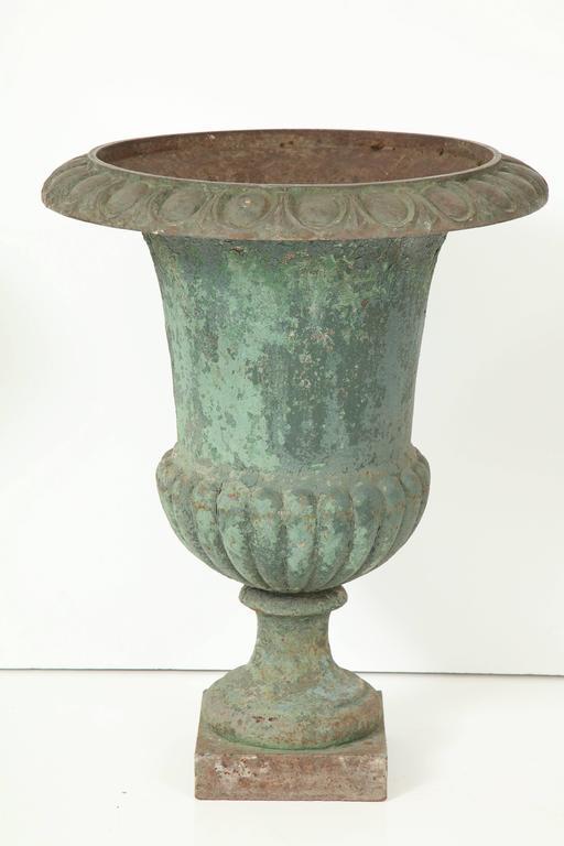 Rare Set of Six Cast Iron Garden Urns 10