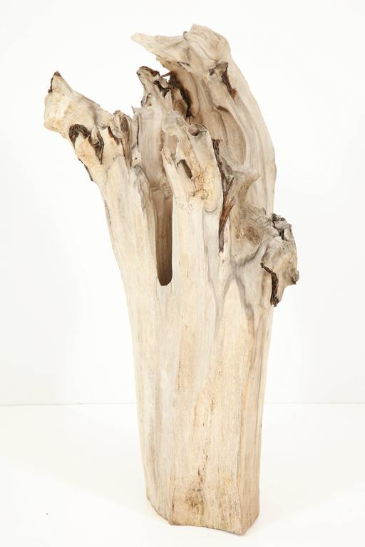 Country Sculpture, Wood, Cypress For Sale