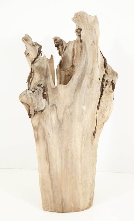 American Sculpture, Wood, Cypress For Sale
