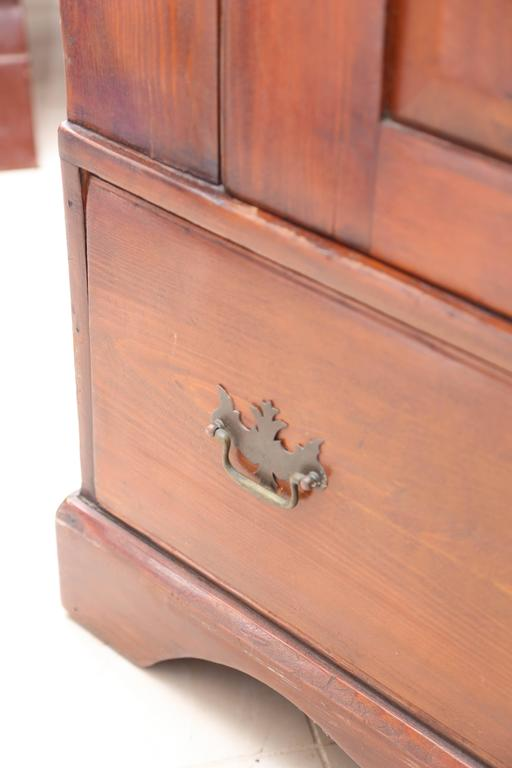 Superb 1800's  American Pewter Cupboard For Sale 2