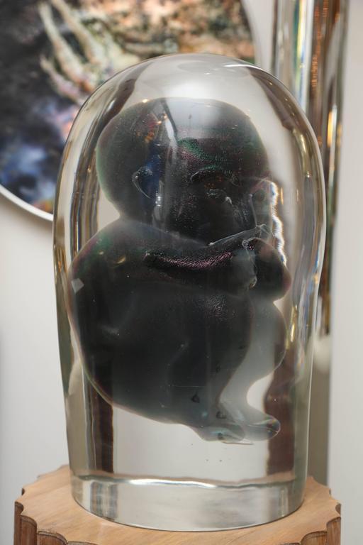 Bizarre Murano Glass Encased Fetus 6