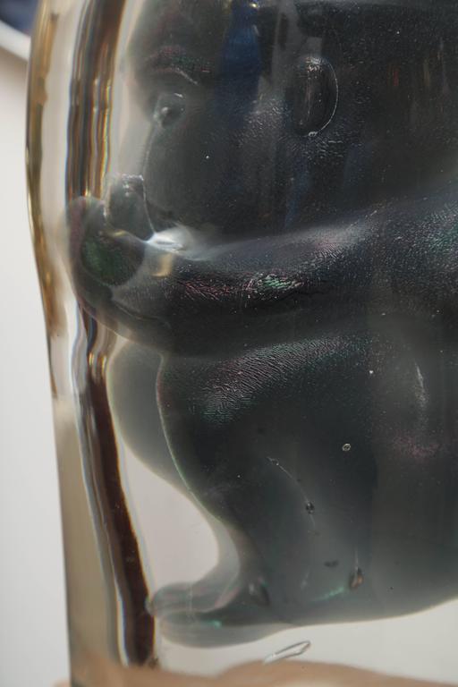 Bizarre Murano Glass Encased Fetus 10